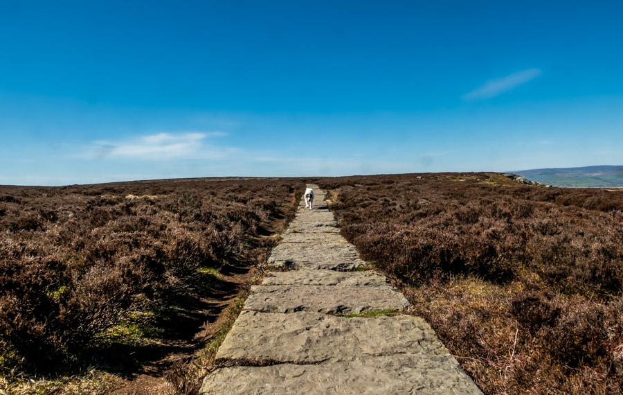 ilkley moor path