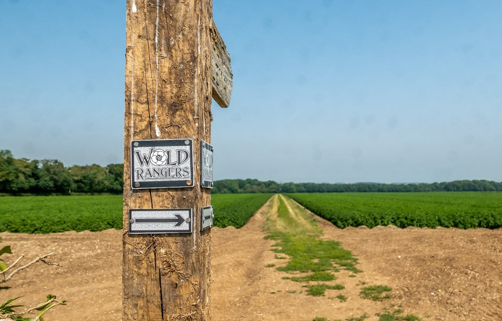 wold rangers way
